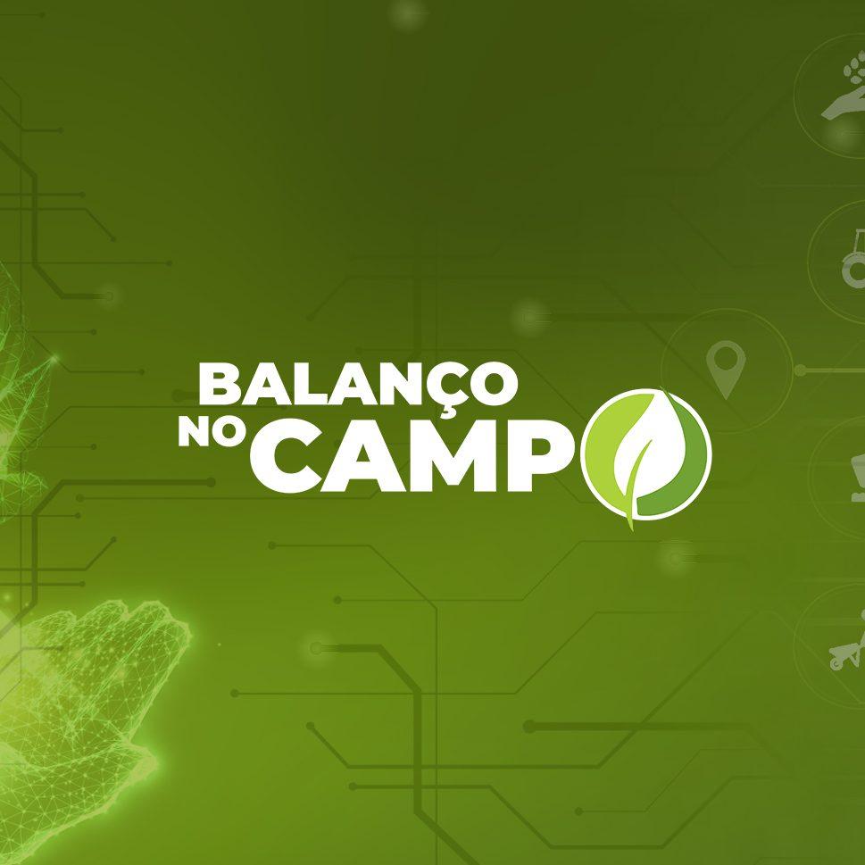 Balanço no Campo