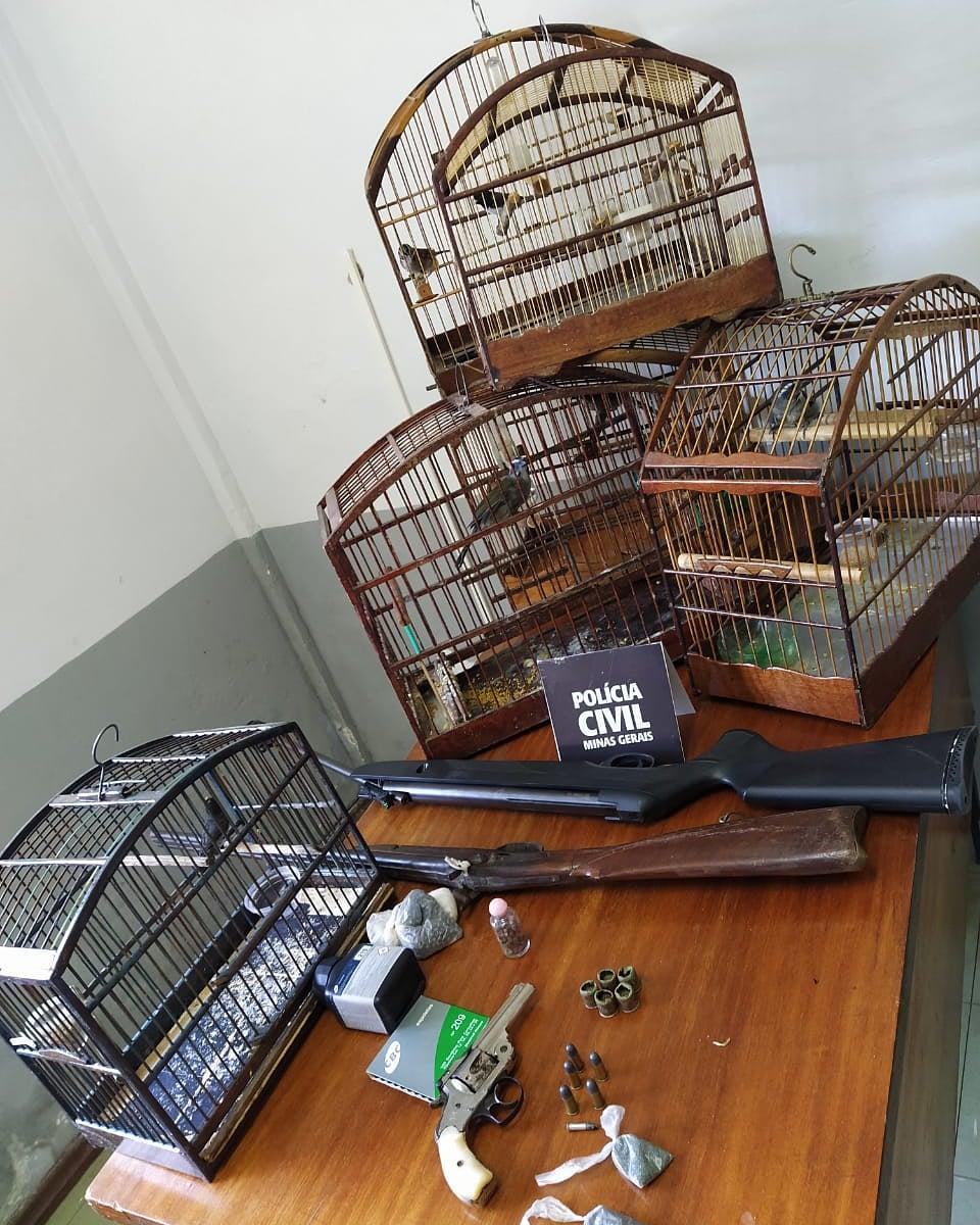 Andrelândia: polícia apreende pássaros, munição e armas na casa de suspeito de furto