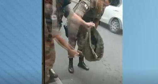 Cobra é capturada pela PM em ponto de ônibus na Zona da Mata
