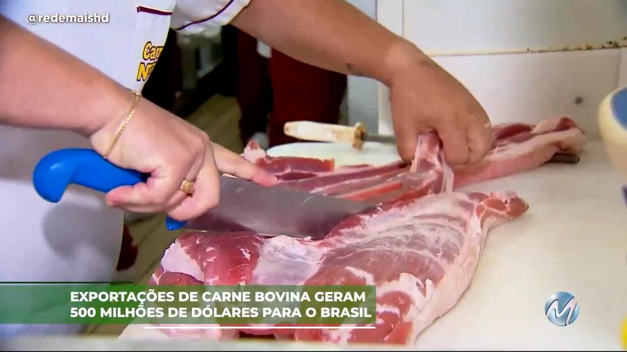 Exportações de carne bovina geram 500 milhões de dólares para o Brasil