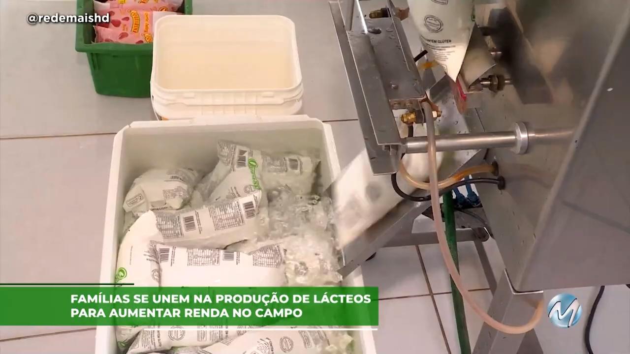 Famílias se unem na produção de lácteos para aumentar renda no campo