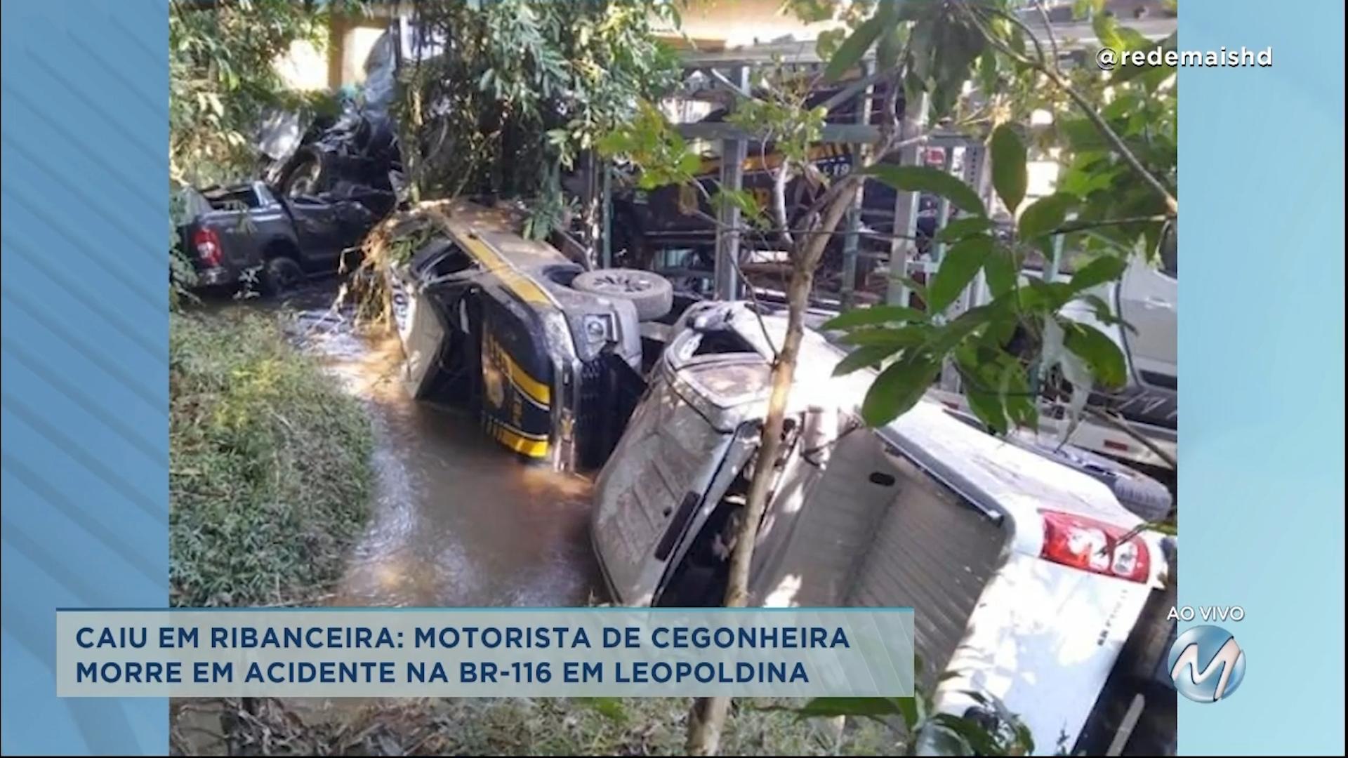 Motorista de cegonheira morre em acidente na BR-116