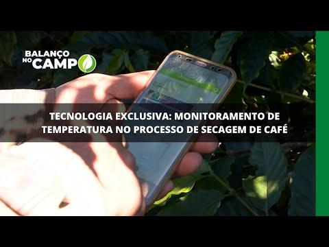 Tecnologia exclusiva: monitoramento de temperatura no processo de secagem de café