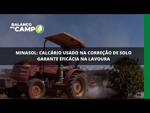 Minasol: calcário usado na correção de solo garante eficácia na lavoura