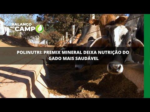 Polinutri: Premix Mineral deixa nutrição do gado mais saudável