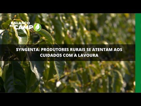 Syngenta: produtores rurais se atentam aos cuidados com a lavoura