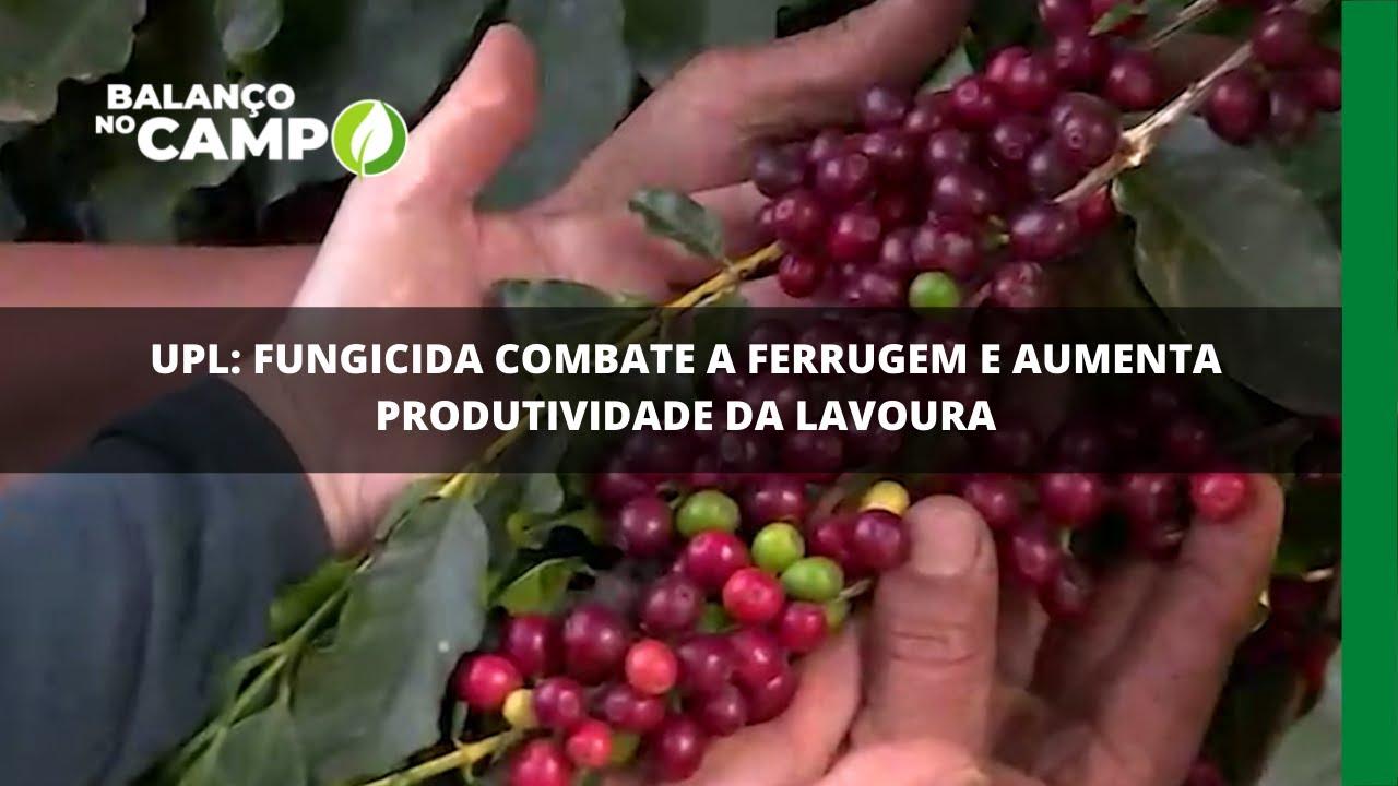 UPL: fungicida combate a ferrugem e aumenta produtividade da lavoura