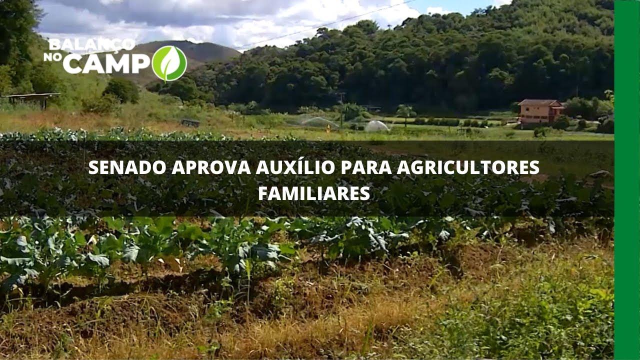 Senado aprova auxílio para agricultores familiares