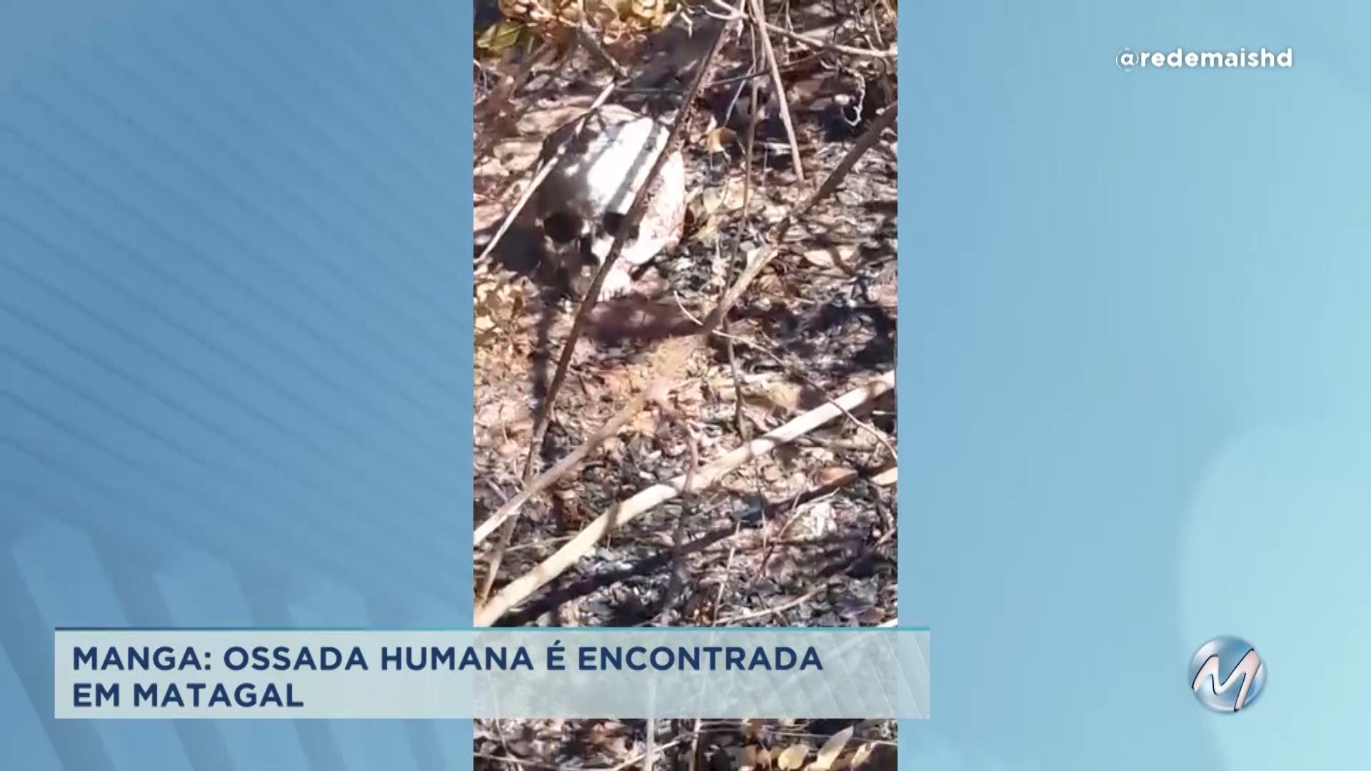 Ossada humana é encontrada em matagal no Norte de Minas