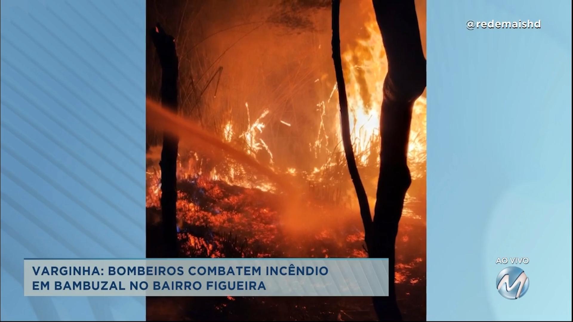 Varginha: bombeiros combatem incêndio em bambuzal no bairro Figueira