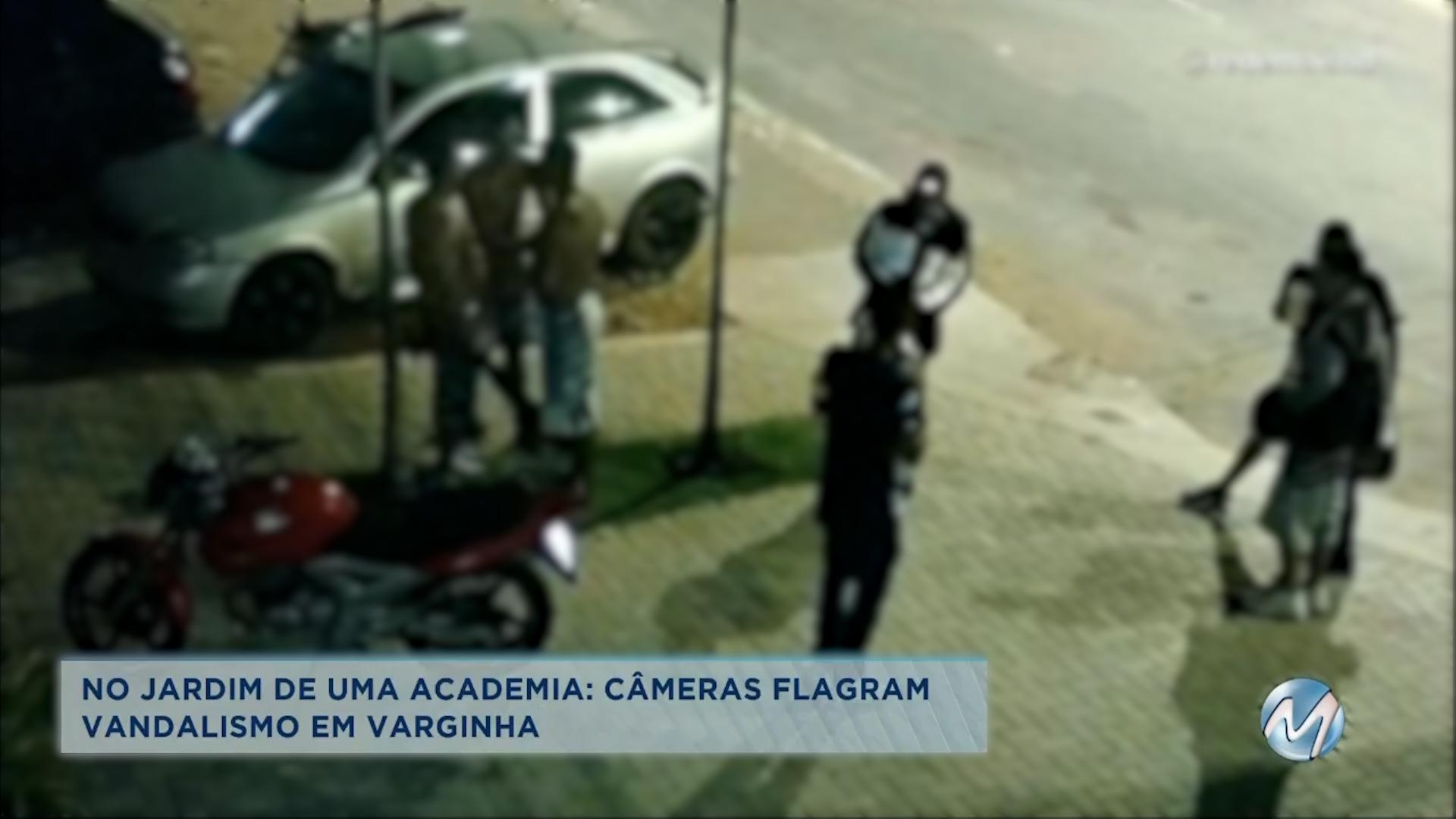No jardim de uma academia: câmeras flagram vandalismo em Varginha