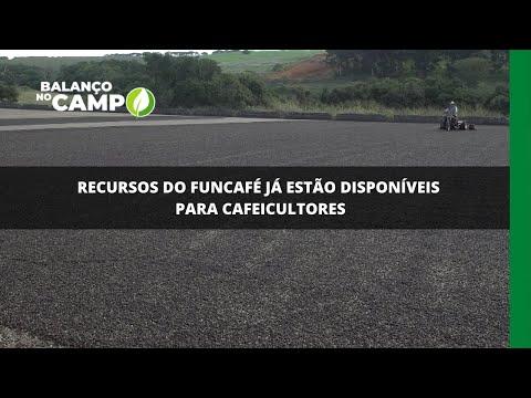 Recursos do Funcafé já estão disponíveis para cafeicultores