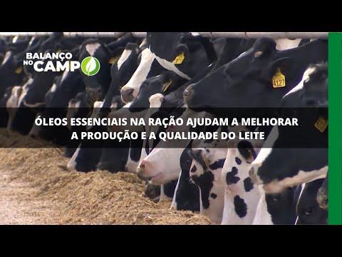 Óleos essenciais na ração ajudam a melhorar a produção e a qualidade do leite