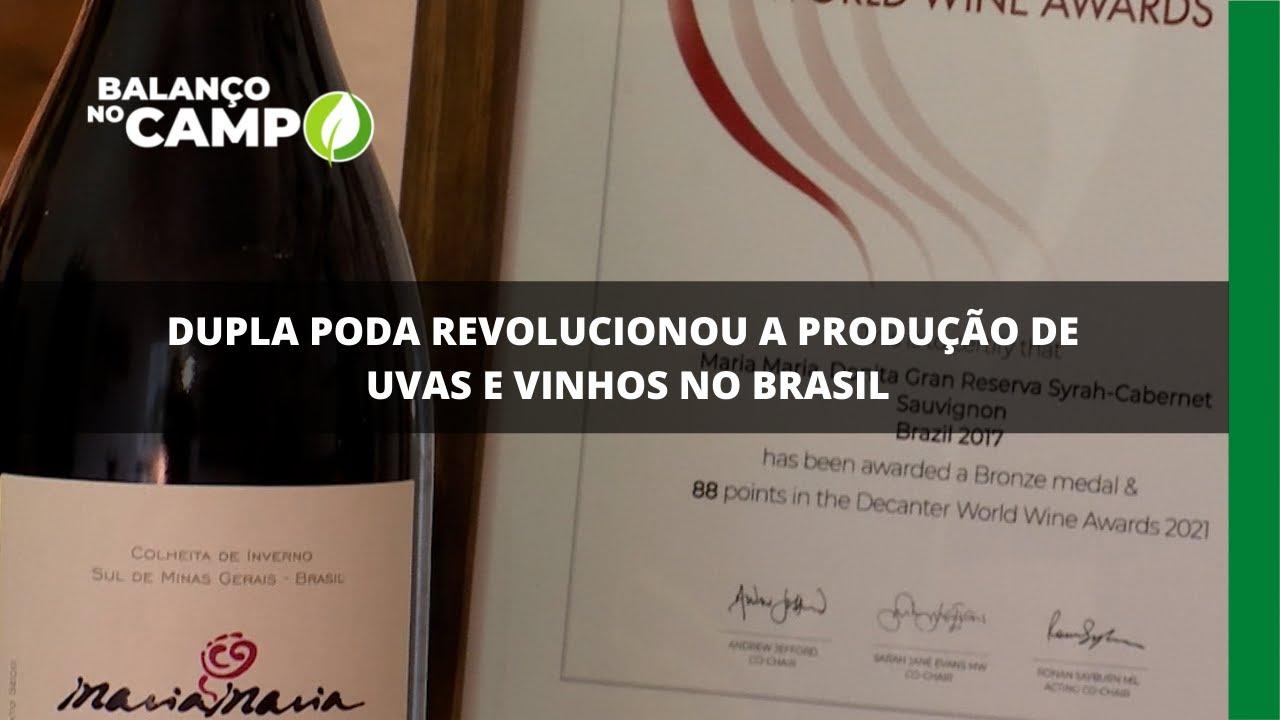 Dupla poda revolucionou a produção de uvas e vinhos no brasil