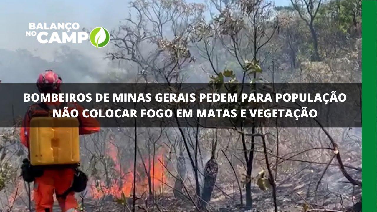 Bombeiros de Minas Gerais pedem para população não colocar fogo em matas e vegetação