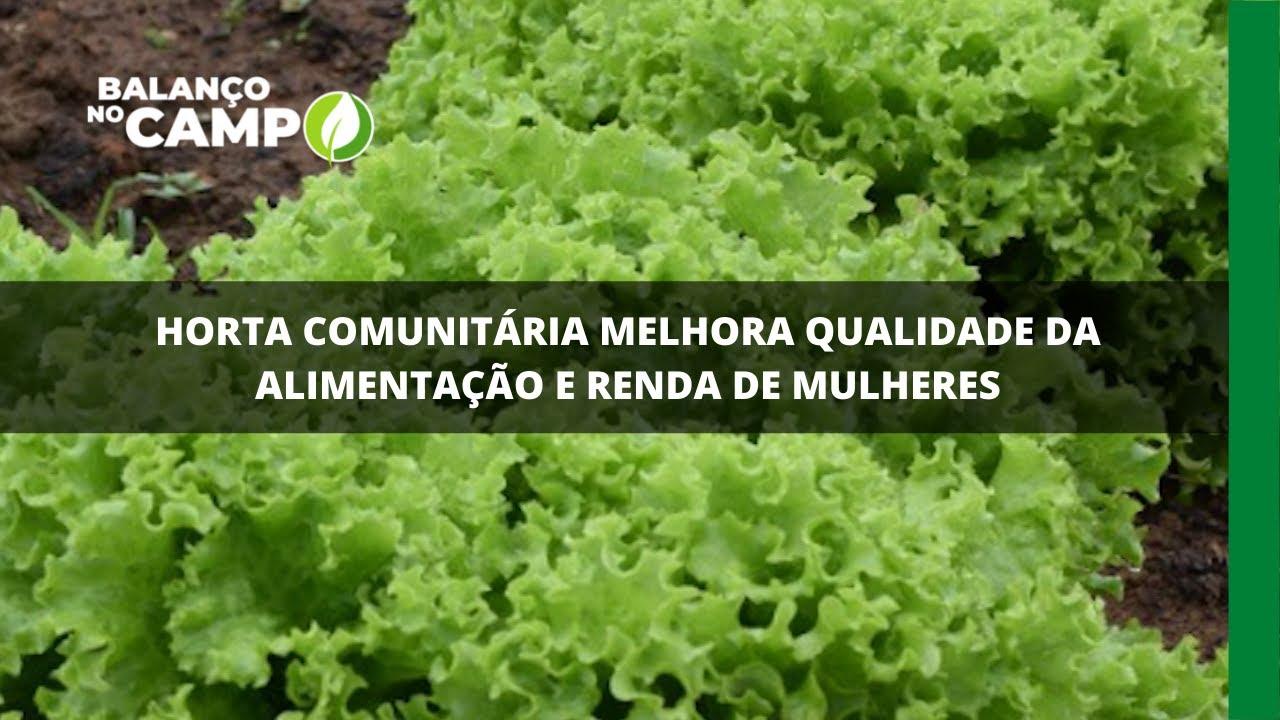 Horta comunitária melhora qualidade da alimentação e renda de mulheres