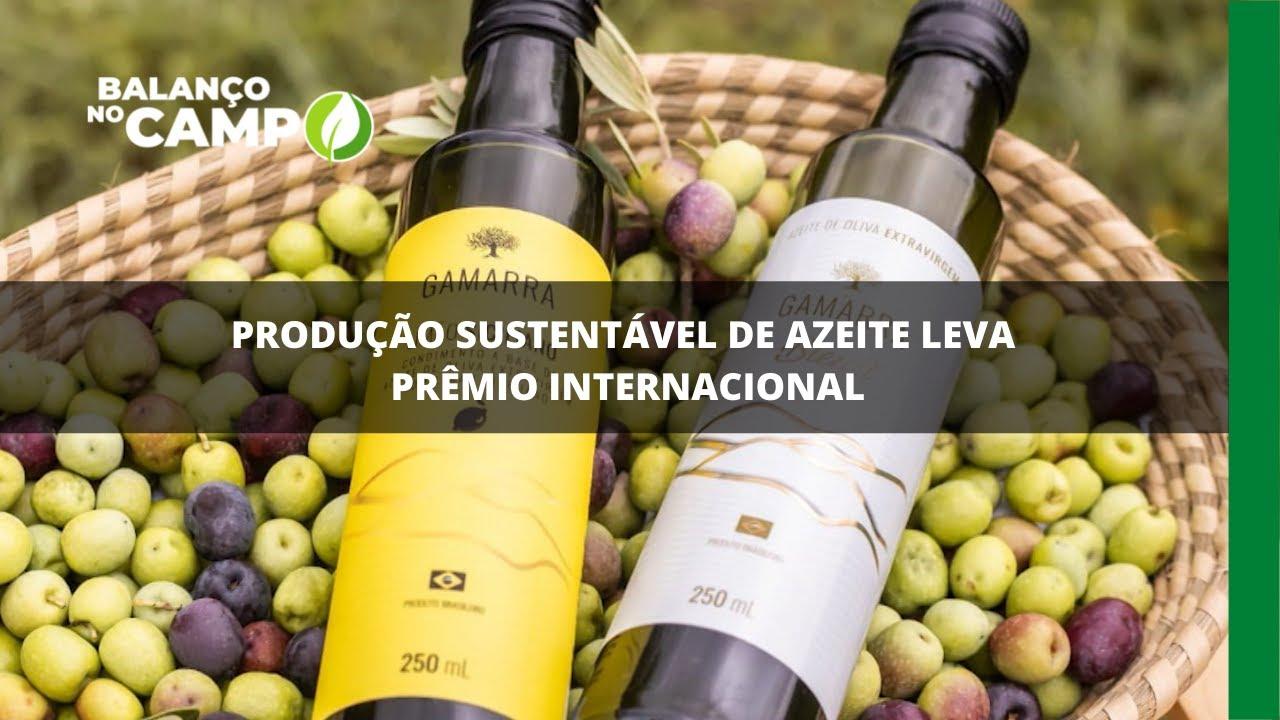 Produção sustentável de azeite leva prêmio internacional
