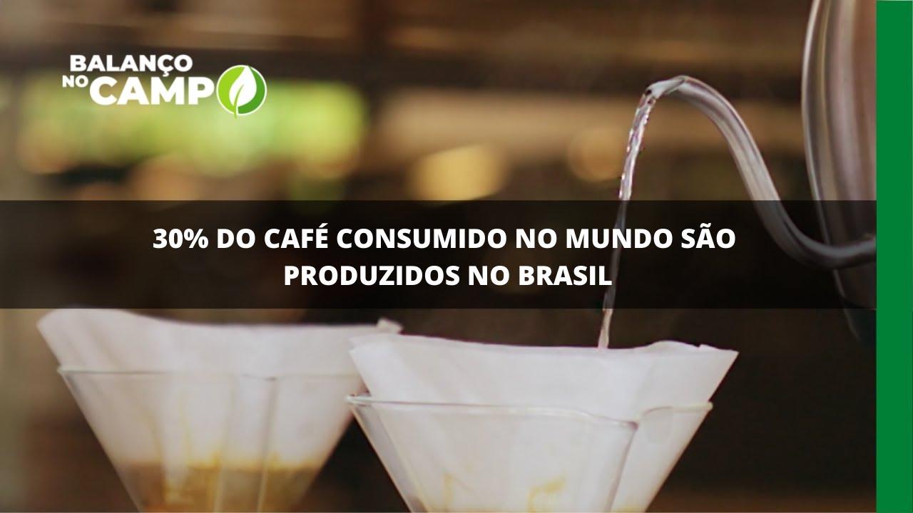 30% do café consumido no mundo são produzidos no Brasil