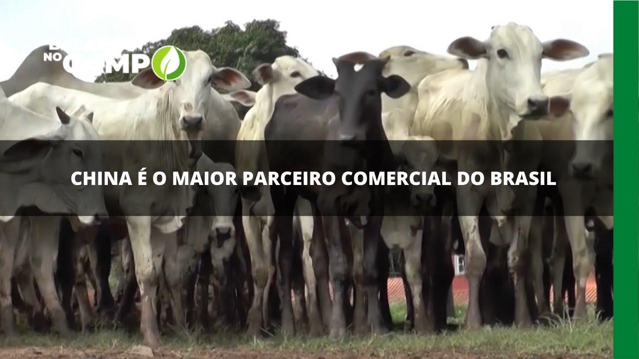 China é o maior parceiro comercial do Brasil