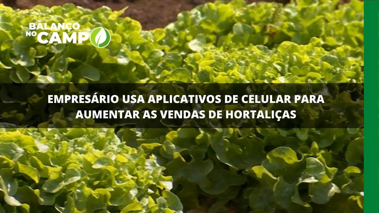 Empresário usa aplicativos de celular para aumentar as vendas de hortaliças