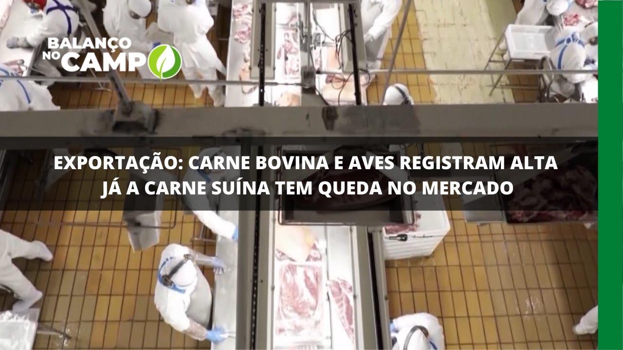 Exportação: carne bovina e aves registram alta