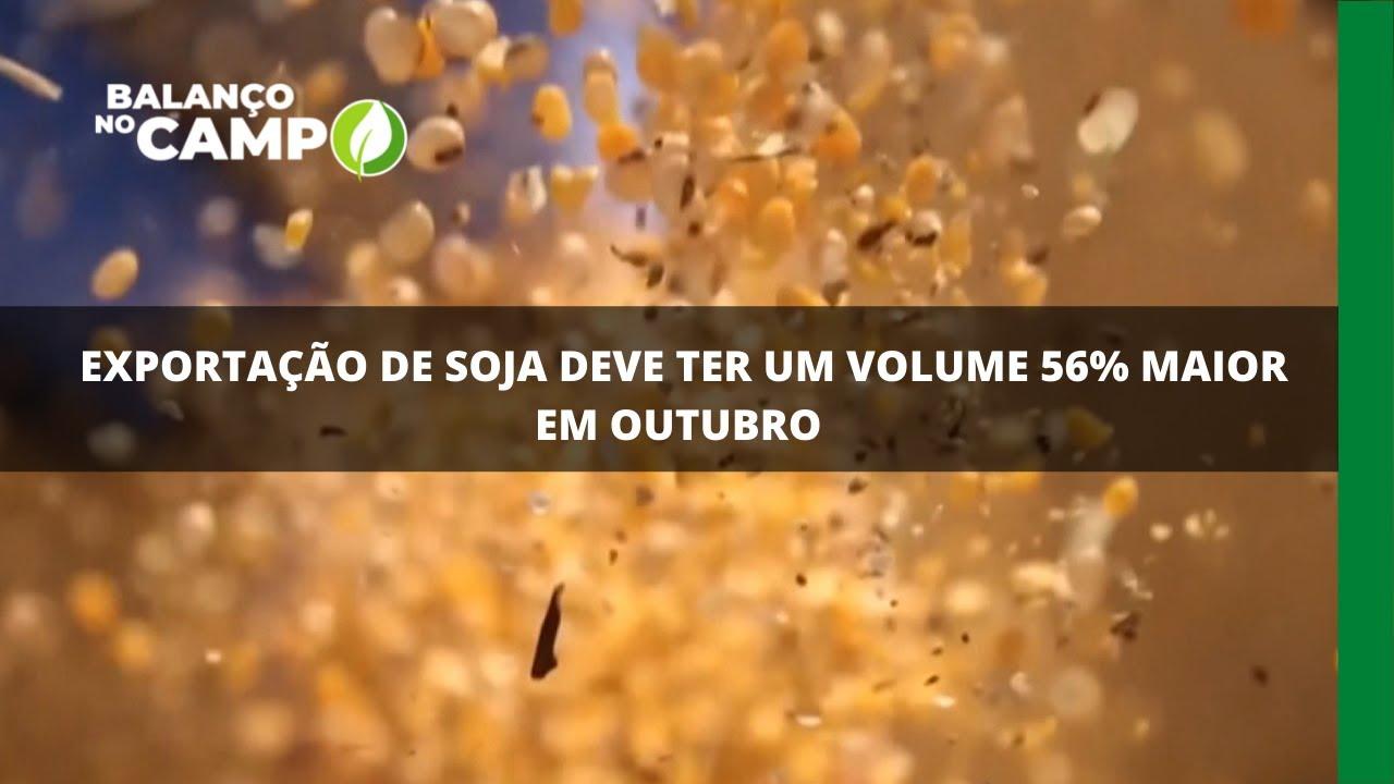 Volume de soja deve ser 56% maior em outubro deste ano se comparado a 2020